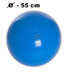 Fit lopta Spartan 55 cm
