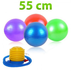 Fit lopra  Gymball 55 cm + pumpa